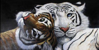 Significado de soñar con tigres
