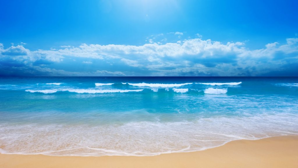 Soñar con el mar 2019