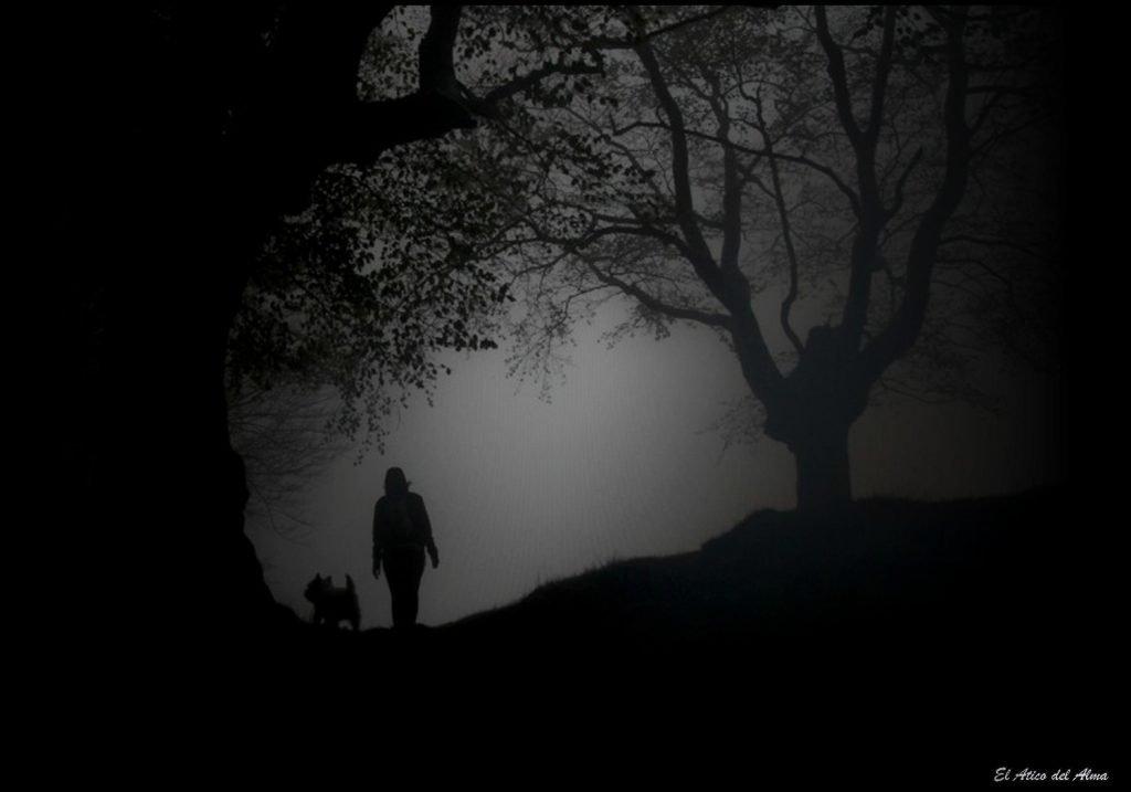 Soñar con oscuridad ¿es tan malo como parece? 2020