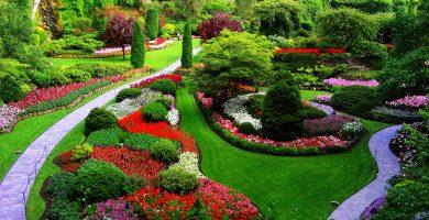 Soñar con Jardín ¿Es realmente tan maravilloso?